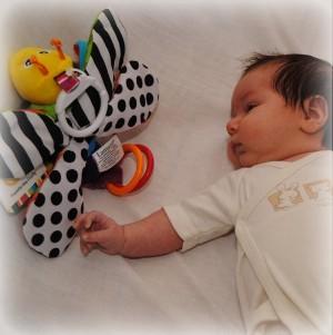 baby kijkt naar zwart-wit zijde van Freddie de Vuurvlieg